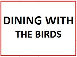 Dining With The Birds on August 8, 2017