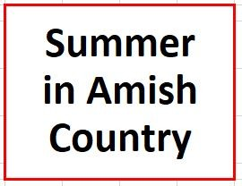 Summer in Holmes County Amish Country on August 15, 2020